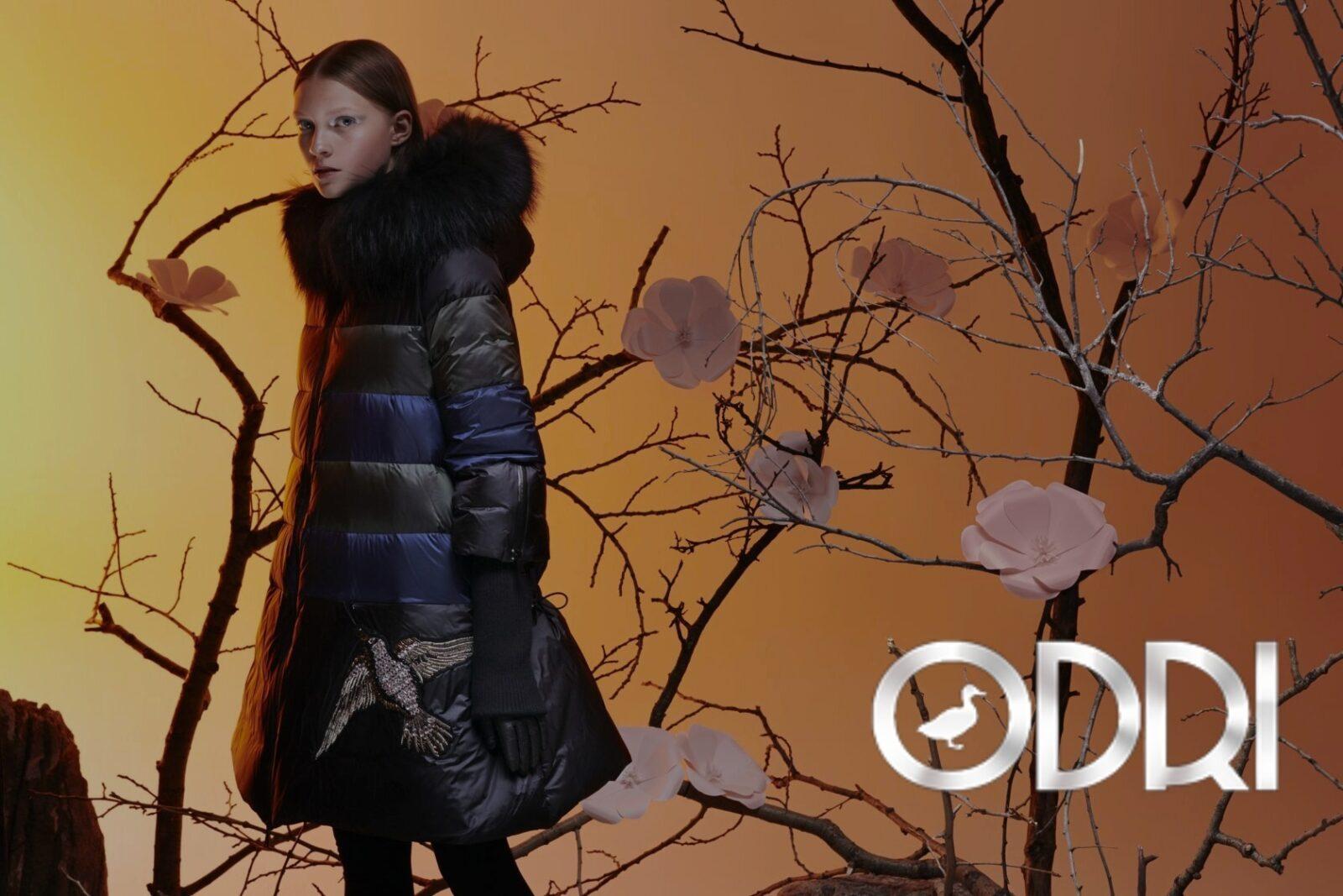 Разработка и продвижение интернет магазина одежды Odri