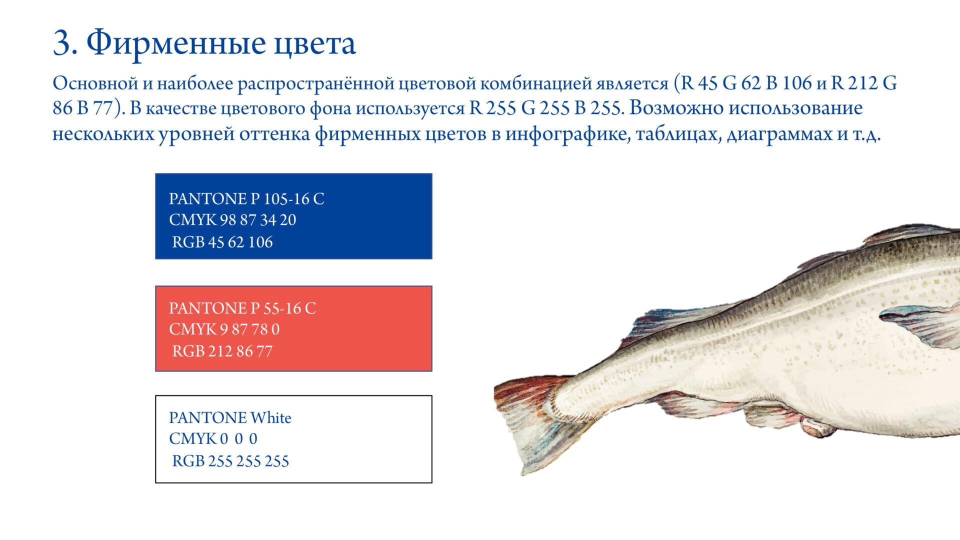 Брендбук FishMarket-05